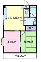 メゾンプレザーント[3階]の間取り