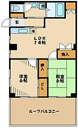 神奈川県川崎市多摩区生田6丁目の賃貸マンションの間取り