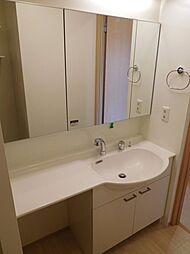 ファイン ビューの鏡の大きいカウンタータイプの洗髪洗面化粧台
