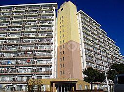 稲城ハイコーポ[5階]の外観
