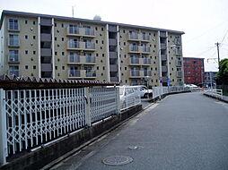 松原ビル[405号室]の外観