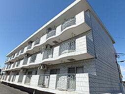 埼玉県さいたま市中央区円阿弥5丁目の賃貸マンションの外観