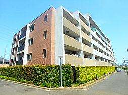 小田急プラウディア[4階]の外観