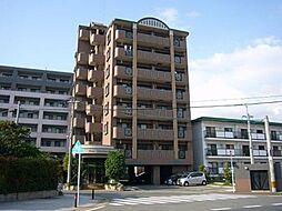 コスモ松島[8階]の外観
