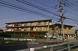 シテイハイツ樋井川[206号室]の外観