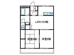 神奈川県海老名市今里3丁目の賃貸アパートの間取り