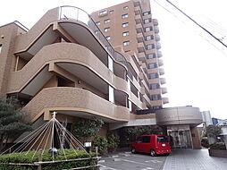 アパガーデンコート新潟駅前[10階]の外観