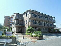 久米田駅 4.4万円