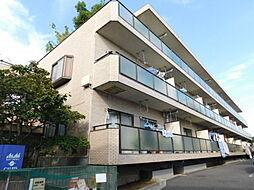 神奈川県伊勢原市白根の賃貸マンションの外観