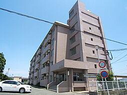 米倉ビル[3階]の外観