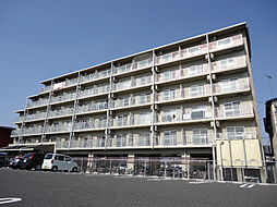 滋賀県彦根市戸賀町の賃貸マンションの外観