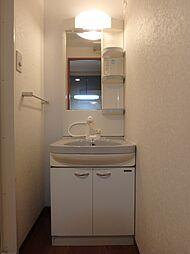 メゾン西梅田の洗面所