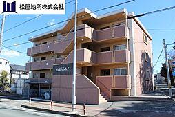 愛知県豊橋市仁連木町の賃貸マンションの外観