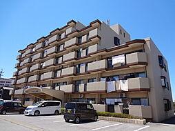 滋賀県長浜市神前町の賃貸マンションの外観
