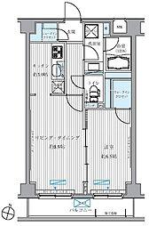 メゾンカルム西新宿[503号室]の間取り