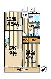山ノ井ハイツ[203号室]の間取り