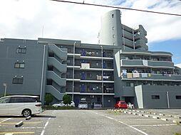 東京都江戸川区興宮町の賃貸マンションの外観