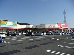 和歌山県和歌山市粟の賃貸マンションの外観