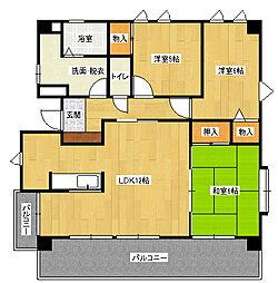 グレイスハイムII[5階]の間取り