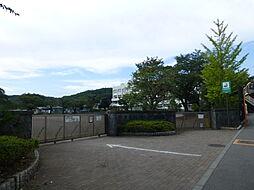 [一戸建] 神奈川県相模原市緑区原宿4丁目 の賃貸【神奈川県 / 相模原市緑区】の外観