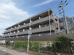 千葉県松戸市古ケ崎2丁目の賃貸マンションの外観