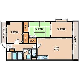 福岡県太宰府市通古賀1丁目の賃貸マンションの間取り