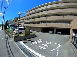 エーデル雲雀丘3番館[3階]の外観