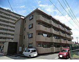 愛知県安城市桜町の賃貸マンションの外観