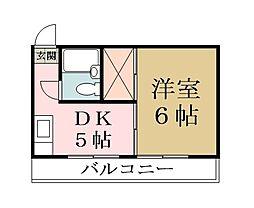 パイナリースカイハイツ[3階]の間取り