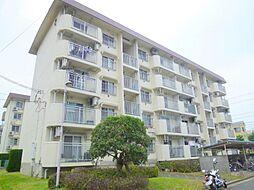安倉団地(住宅供給公社賃貸物件)[2階]の外観