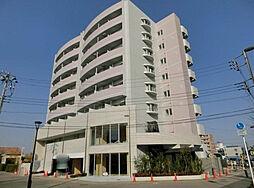 千葉県柏市若柴の賃貸マンションの外観