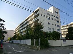 新潟駅南ハイツ[4階]の外観