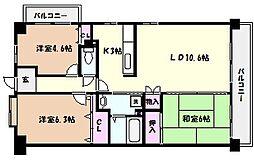 兵庫県芦屋市西山町の賃貸マンションの間取り