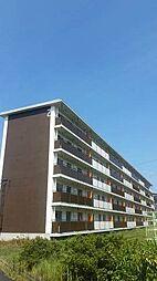 岡山県岡山市北区御津国ケ原の賃貸マンションの外観