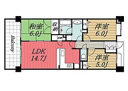 千葉県八千代市上高野の賃貸マンションの間取り