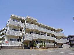 東京都練馬区南大泉3丁目の賃貸マンションの外観