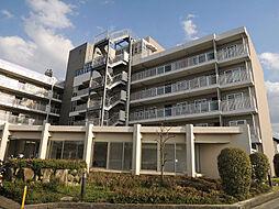 大阪府八尾市東山本町4丁目の賃貸マンションの外観