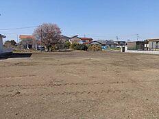 現地(2016年3月)撮影