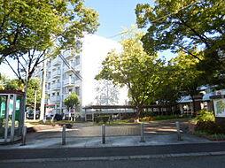 UR湊駅前[46号棟 403号室号室]の外観