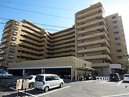 ライオンズマンション泉南樽井第2[8階]の外観
