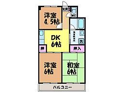 愛媛県松山市和泉北4丁目の賃貸マンションの間取り