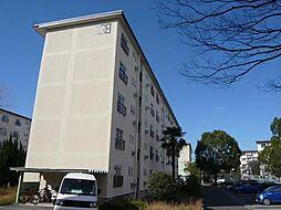 UR金剛マンション 338棟[4階]の外観