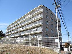 埼玉県上尾市西宮下4丁目の賃貸マンションの外観