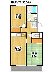 パティオ東菅野 1番館[1階]の間取り