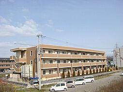 兵庫県姫路市阿保乙の賃貸マンションの外観