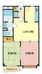 埼玉県さいたま市浦和区領家4丁目の賃貸マンションの間取り