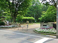 忠生公園は、多摩丘陵の典型的な谷戸の地形を生かした公園です。公園内にある忠生公園自然観察センターには、講習室や展示室などがあり、自然教育活動、自然資源を扱った展示公開、自然保護活動で利用できます。