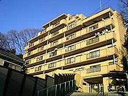 CASSIA保土ヶ谷(旧日宝コートヒルズ保土ヶ谷)[0302号室]の外観