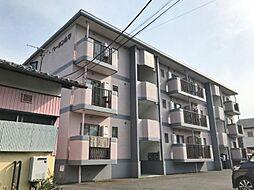 静岡県三島市安久の賃貸マンションの外観