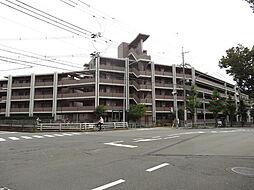 京都市左京区修学院犬塚町
